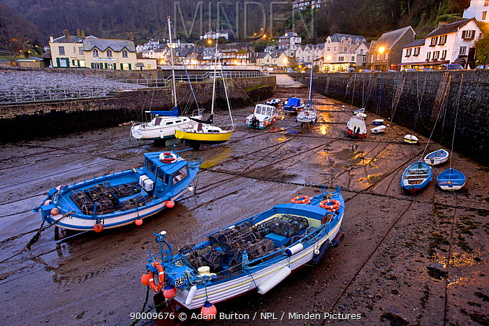 Low tide in Lynmouth Harbour in the evening, Exmoor National Park, Devon, England  -  Adam Burton/ npl