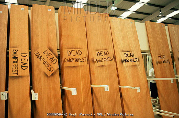 Timber protest inside Texas superstore, Greater Manchester, UK June 1993  -  Hugh Warwick/ npl