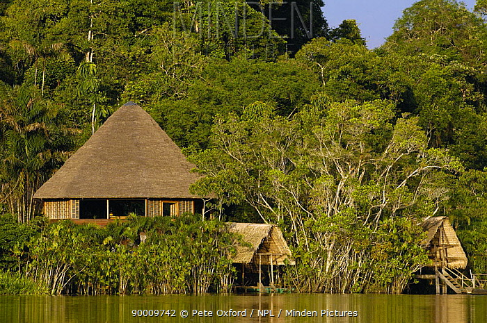 Sani Lodge, Close to Yasuni National Park Napo River, Amazonia, Ecuador A Quichua Indian owned and run safari lodge  -  Pete Oxford/ npl