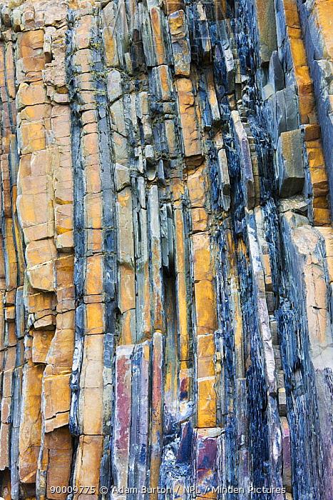 Rock strata at Sandymouth Bay in North Cornwall, England  -  Adam Burton/ npl