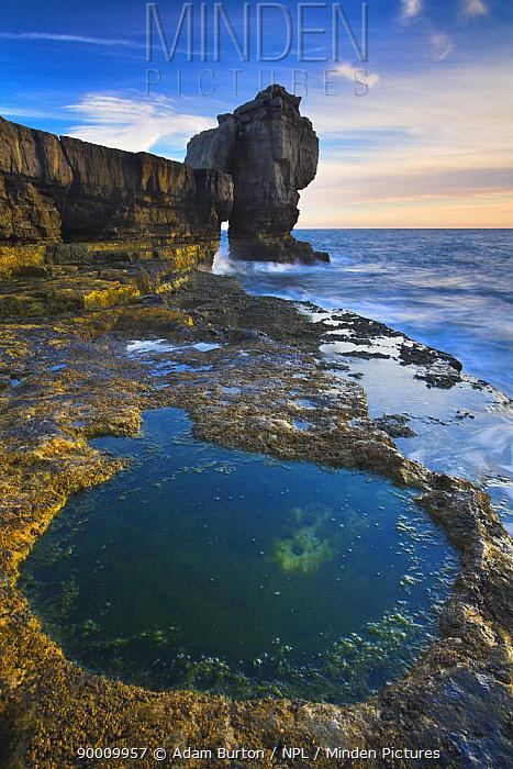 Circular rockpool beside Pulpit Rock, Portland Bill, Dorset, UK  -  Adam Burton/ npl