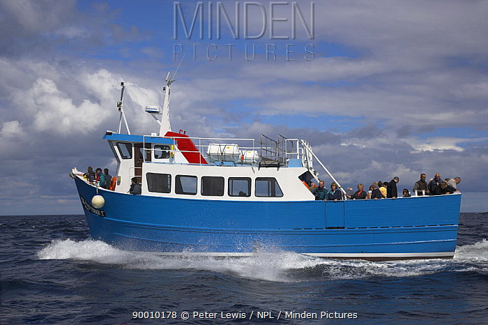 passenger ferry, tourist boat GLAD TIDINGS on trip to the Farne Islands, Northumberland, UK  -  Peter Lewis/ npl