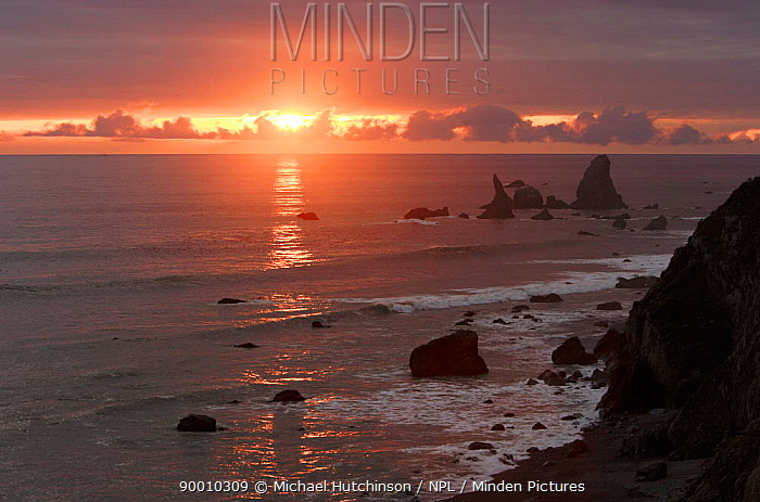 Sunset viewed from Highway 101 coast Road, Pacific coast, California, USA  -  Michael Hutchinson/ npl