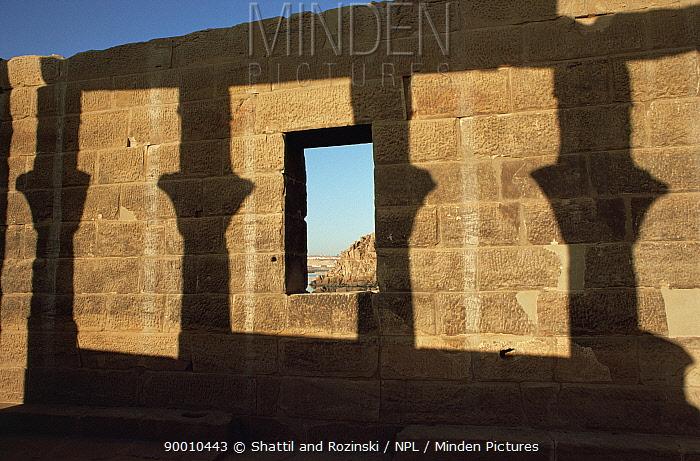 Shadow of pillars against a stone wall, Philae Temple, Aswan, Egypt, 2007  -  Shattil & Rozinski/ npl