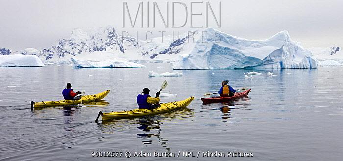 Tourists kayaking in Antarctic waters, Antarctic Peninsula, Antarctica December 2007  -  Adam Burton/ npl