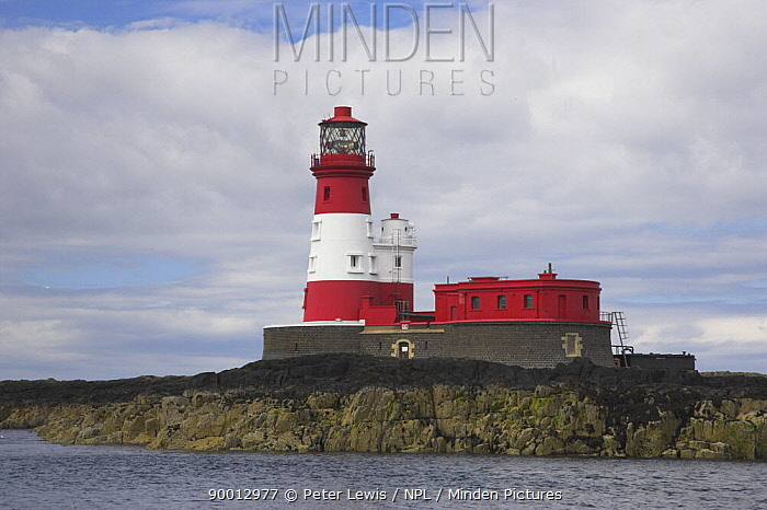 Longstone Lighthouse on Longstone Rock, Outer Farne, Outer Staple Islands, Farne Islands, Northumberland, UK  -  Peter Lewis/ npl