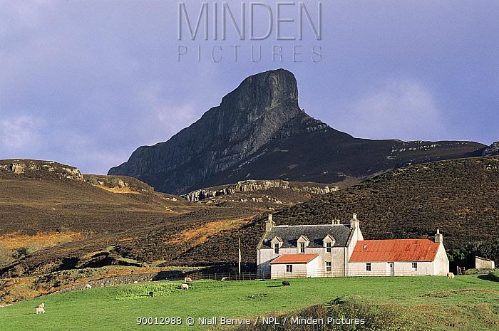 An Sgurr from Galmisdale Isle of Eigg, Argyll, Inner Hebrides, Scotland  -  Niall Benvie/ npl