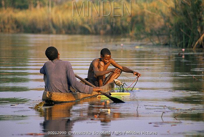 Fishermen catch fish with traditional nests, Okavango delta, Botswana, Sequence 2, 3  -  Anuschka De Rohan/ npl