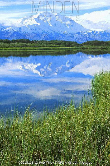 Mount McKinley, Denali NP, Alaska, USA August 1997  -  Rob Tilley/ npl