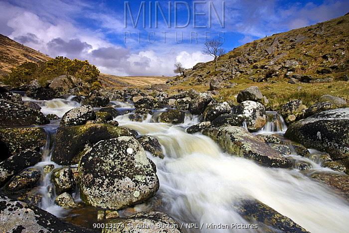 Rocky stream at Tavy Cleave, Dartmoor NP, Devon, UK  -  Adam Burton/ npl