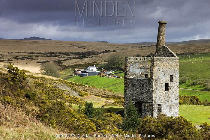 The ruins of Wheal Betsy mine on the western edge of Dartmoor National Park, Devon, England, 2008  -  Adam Burton/ npl