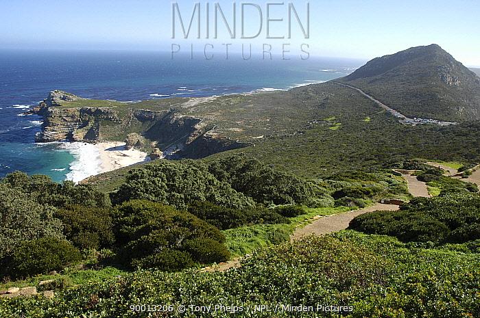 Cape Point, Cape Floristic region, South Africa  -  Tony Phelps/ npl