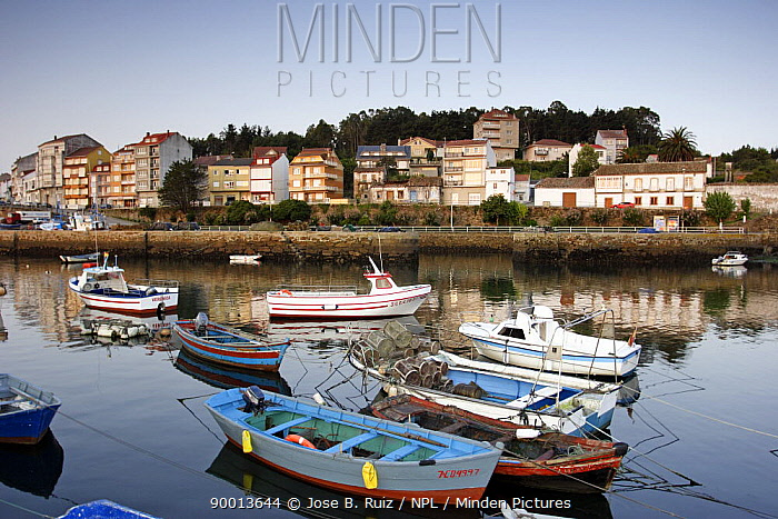 Small boats moored in the harbour town of Camerinas, Costa da Morte, Galicia, Spain  -  Jose B. Ruiz/ npl