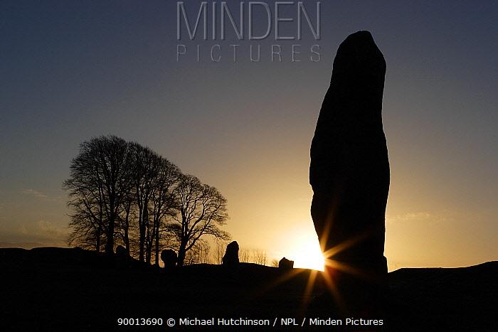 Silhouette stone megalith at Avebury Stone Circle (World Heritage Site), sunrise  -  Michael Hutchinson/ npl