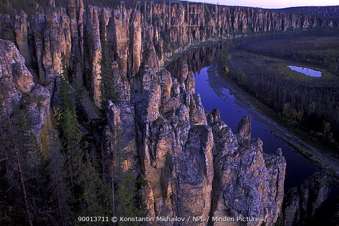 Lena river, Lenskie Stolby reserve, Yakutia Sakha republic, East Siberia, Russia Cambrian stone poles and towers along river Sinyaya (Synsk), the left tributary of Lena River  -  Konstantin Mikhailov/ npl