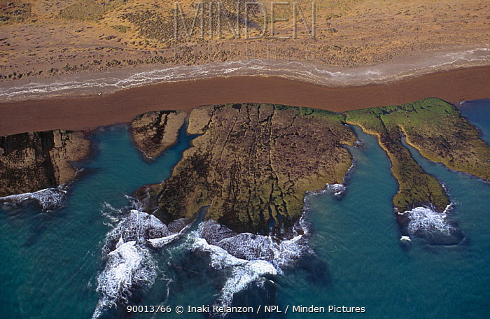 Aerial view of the coast of Patagonia showing Orca in channel along beach, Valdes peninsula, Patagonia, Argentina, october 2003  -  Inaki Relanzon/ npl