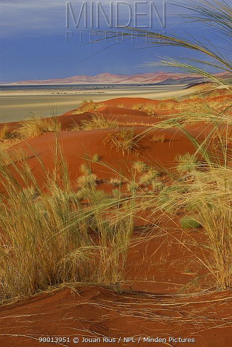 Sesriem plain, view from Elim Dune, Namib Naukluft NP, Namib desert, Namibia  -  Jouan & Rius/ npl