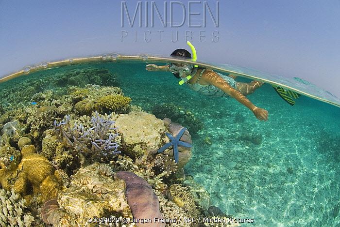 Woman snorkelling watching life on a shallow reef, Rowley Shoals, Western Australia  -  Jurgen Freund/ npl