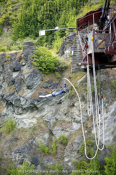 Bungy Jumping, Kawarau Suspension Bridge, Queenstown, Otago, New Zealand  -  Barry Bland/ npl