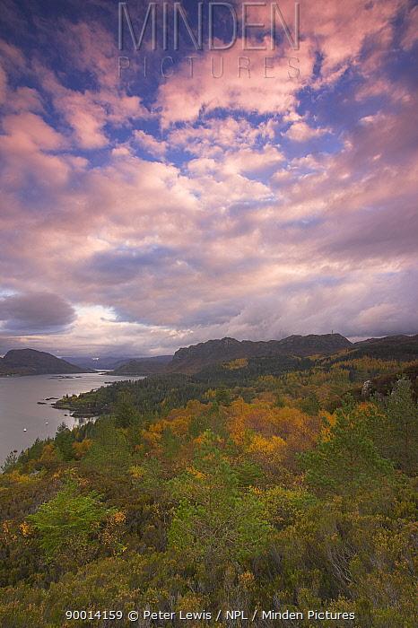 View above Plockton, autumn, Kyle of Lochalsh, Scotland, UK  -  Peter Lewis/ npl