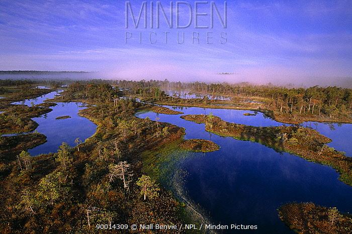 Endla NR wetlands at dawn, Mannikjarve Raba, Estonia  -  Niall Benvie/ npl