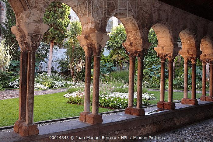 Arches and garden at the Church of St Salvi, Albi, Southern France  -  Juan Manuel Borrero/ npl
