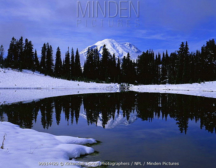 Tipsoo Lake after a snowstorm with Mount Rainier in the background, Mount Rainier NP, Washington, USA  -  Kirkendall-spring/ npl