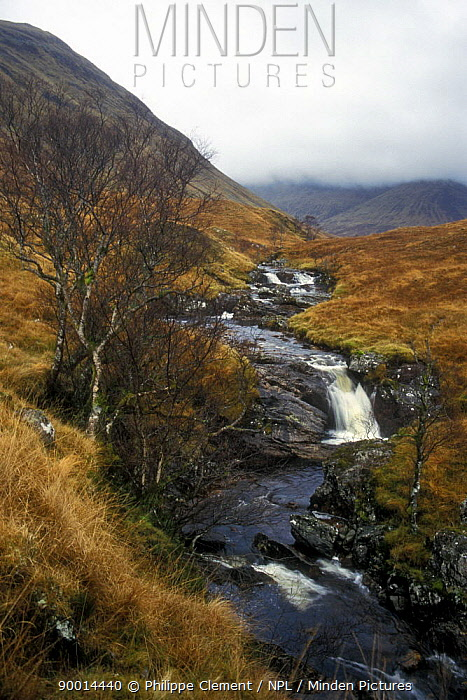 Mountain stream and hills in the fog, Highlands, Scotland  -  Philippe Clement/ npl