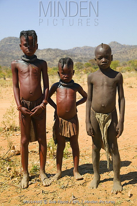 Young Himba children in Kaokoland, Namibia Himba girls are identified by two distinctive plaits, whilst Boys have a Mohican  -  Sue Flood/ npl