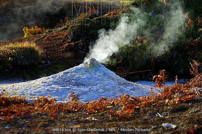 Small cone emitting steam from the depths of the caldera of the Uzon Volcano, Kronotsky Zapovednik Reserve, Russia  -  Igor Shpilenok/ npl