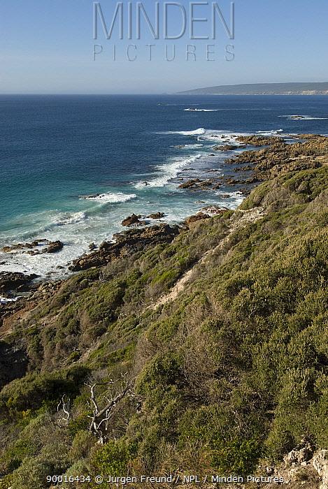 The coastline of Yallingup, Western Australia  -  Jurgen Freund/ npl