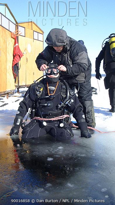 Diver preparing to dive under ice in the White Sea, Northern Russia March 2008  -  Dan Burton/ npl
