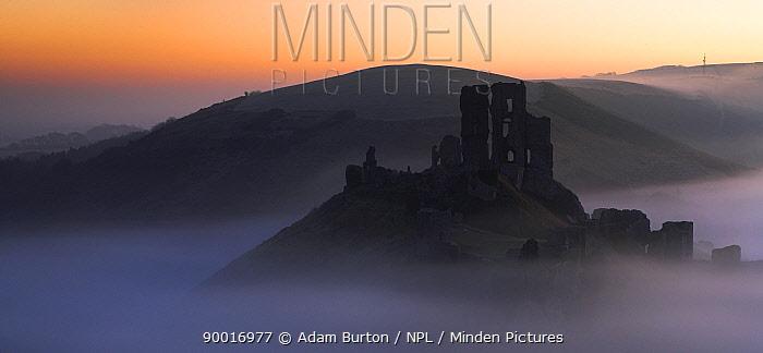 Mist surrounds the ruins of Corfe Castle, Dorset, England  -  Adam Burton/ npl