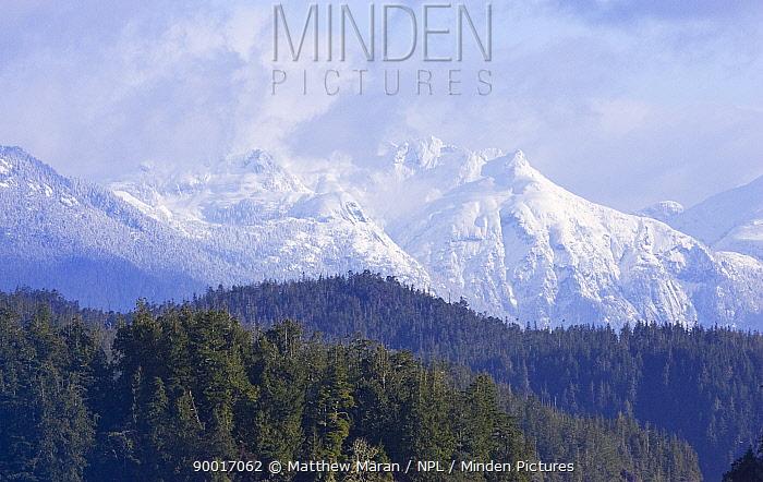 Bedingfield mountain range, Clayoquot Sound, Vancouver Island, BC, Canada  -  Matthew Maran/ npl