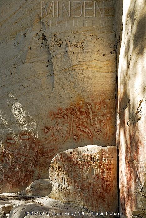 Aboriginal rock painting, Art Gallery Cave, Carnarvon National Park, Queensland, Australia  -  Jouan & Rius/ npl