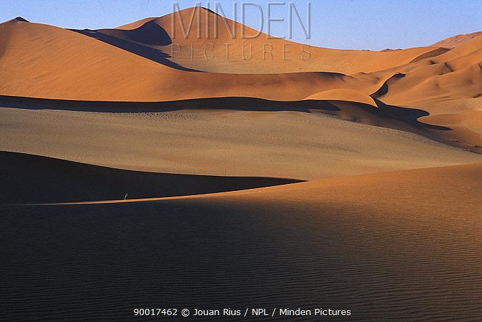 Sand dunes in the Namib-Naukluft NP, Namib desert, Namibia  -  Jouan & Rius/ npl
