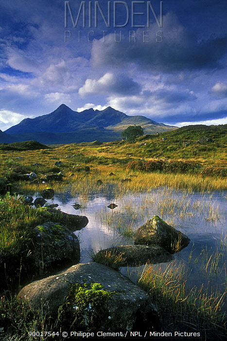 Bog and the Cuillin Hills on the Island of Skye, Inner Hebrides, Scotland  -  Philippe Clement/ npl