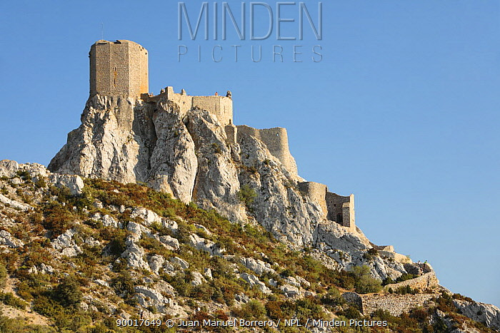 Cathar Castle of Qu?ribus, perched on a rocky outcrop, France  -  Juan Manuel Borrero/ npl