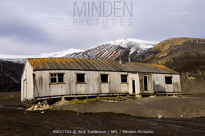 Old wooden houses on the volcanic shore at Whalers Bay, Deception Island, Antarctic Peninsula, January 2007  -  Rick Tomlinson/ npl
