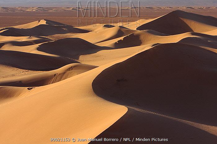 Sand dunes in Erg Lihoudi desert, M?Hamid, Morocco December 2007  -  Juan Manuel Borrero/ npl