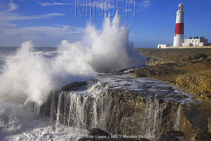 Waves crashing over the rocks at Portland Bill with lighthouse in the background, Dorset, UK  -  Peter Lewis/ npl
