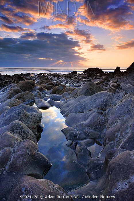 Rockpool and sunset at Sandymouth, Cornwall, England  -  Adam Burton/ npl
