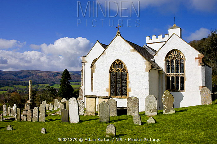 Selworthy Church, Exmoor National Park, Somerset, England  -  Adam Burton/ npl