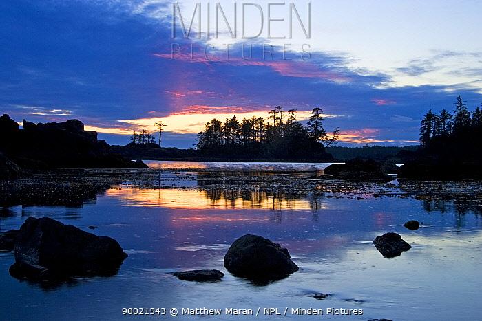 Sunset on the Wild Pacific Trail Vancouver Island, Canada  -  Matthew Maran/ npl