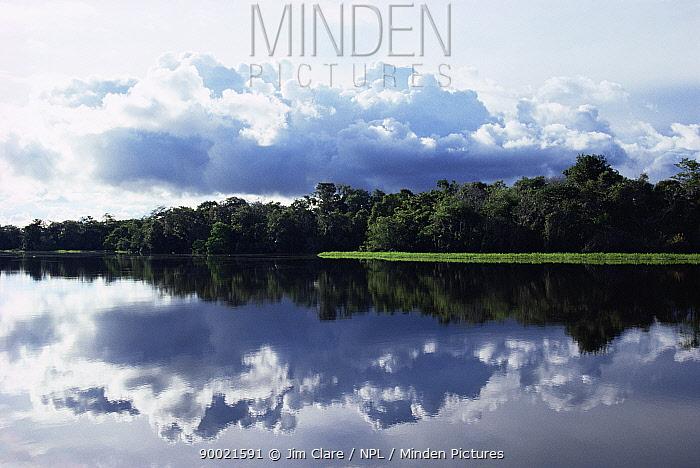Reflections in Lake Mamirara near Tefe, Amazonia, Brazil, South America  -  Jim Clare/ npl
