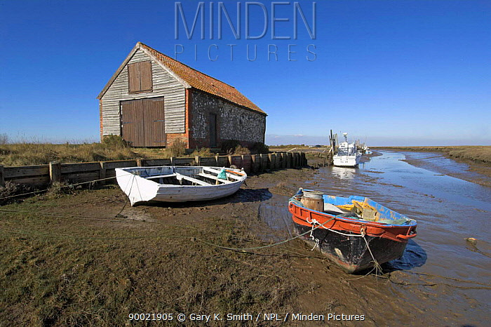 Old coal house building and boats by Thornham harbour in saltmarsh habitat at low tide, Norfolk, UK  -  Gary K. Smith/ npl