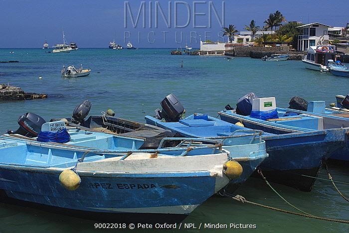Boats moored at Puerto Ayora, Santa Cruz Island, Galapagos Islands 2006  -  Pete Oxford/ npl