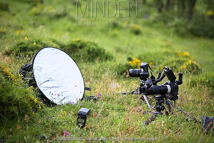 Photographic set-up with camera, reflector and flash gun for taking macro photos of plants, Picos de Europa, Asturias, Spain  -  Jose B. Ruiz/ npl