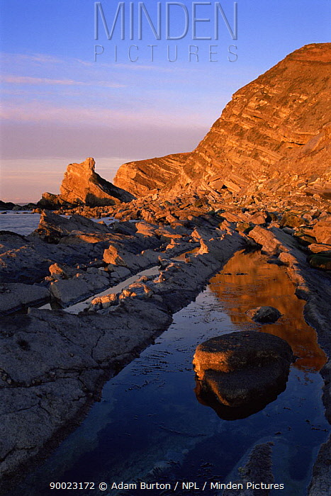 Mupe ledges and rockpools at sunrise, Jurassic Coast World Heritage Site, Dorset  -  Adam Burton/ npl
