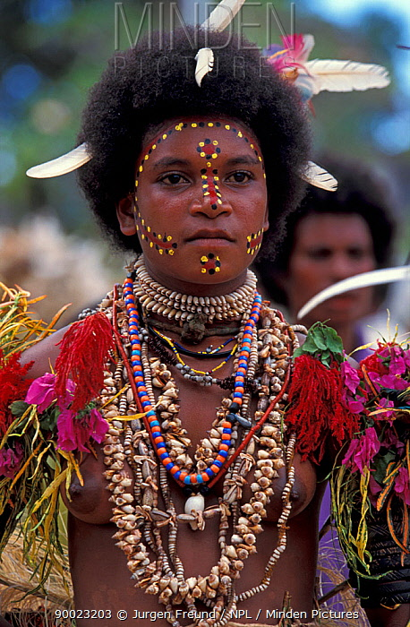 Female dancer at Sing-Sing celebration with face paint and shell jewellery Tufi, Oro Province, Papua New Guinea  -  Jurgen Freund/ npl